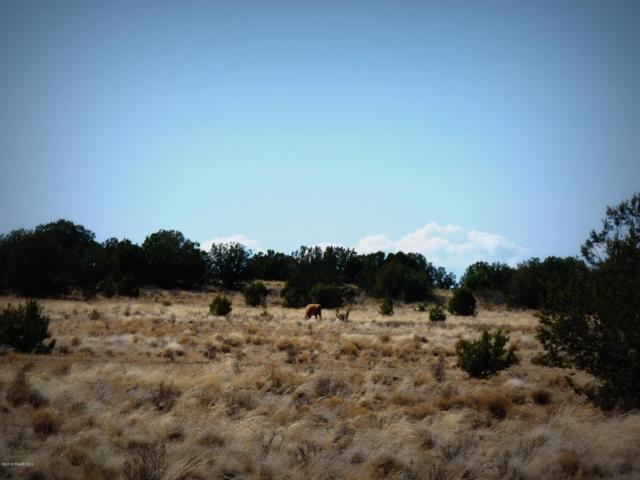 01 Headwater Ranch, Chino Valley, AZ 86323 (#1011143) :: HYLAND/SCHNEIDER TEAM