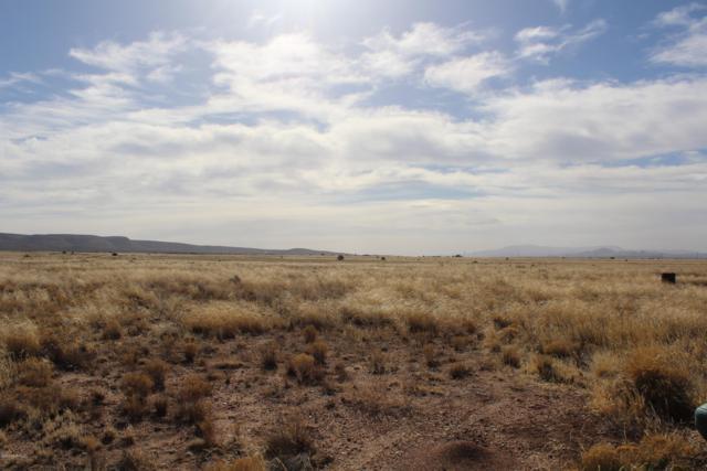 3971 W Limestone Drive, Paulden, AZ 86334 (#1011147) :: HYLAND/SCHNEIDER TEAM