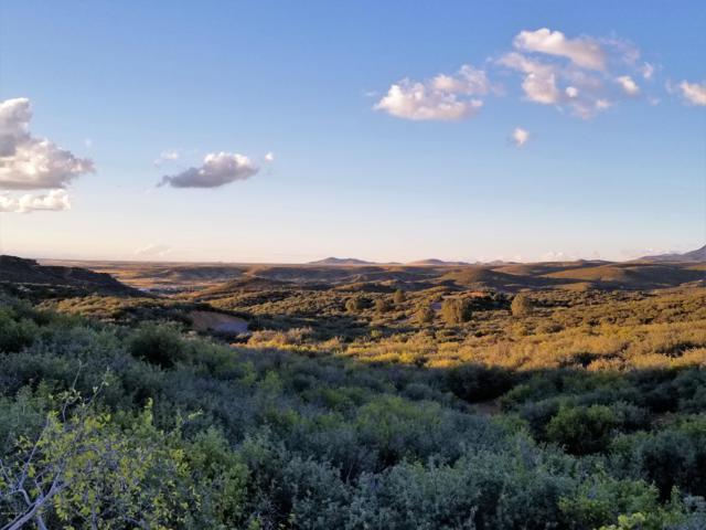 000 Bonanza Trail, Dewey-Humboldt, AZ 86327 (#1016336) :: HYLAND/SCHNEIDER TEAM