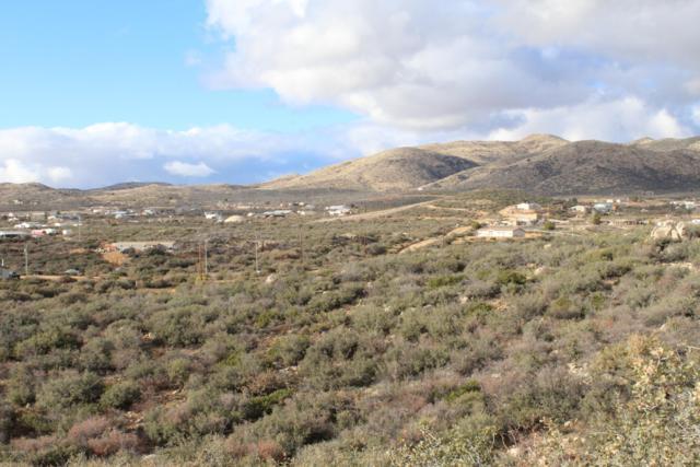 17850 Hunters Lane, Dewey-Humboldt, AZ 86327 (#1016399) :: HYLAND/SCHNEIDER TEAM