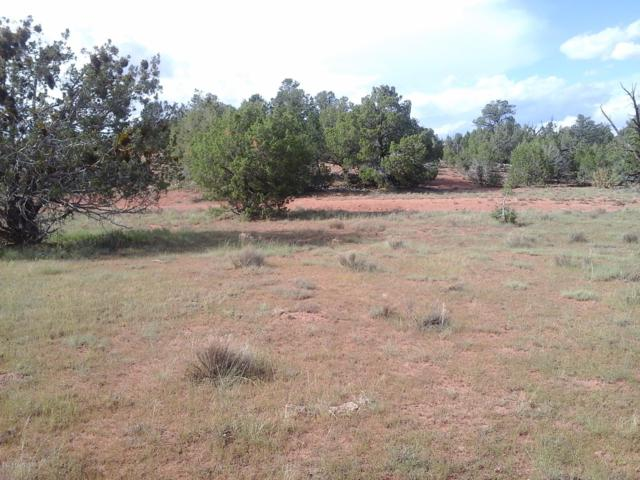 Lot 76 Unit 7 Juniperwwod Ranch, Ash Fork, AZ 86320 (#1017810) :: HYLAND/SCHNEIDER TEAM