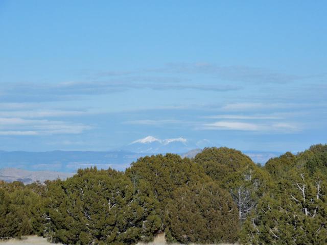 10 Acres W Longbranch Trail, Prescott, AZ 86305 (#1017942) :: HYLAND/SCHNEIDER TEAM