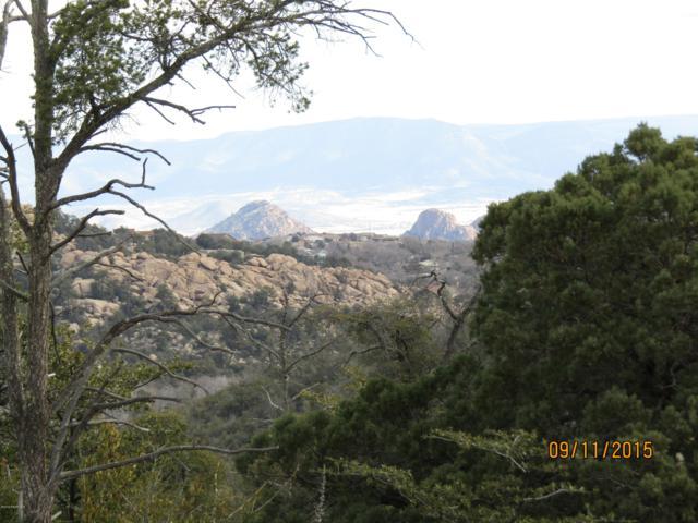 1397 Dana Lee Circle, Prescott, AZ 86305 (#1018538) :: West USA Realty of Prescott