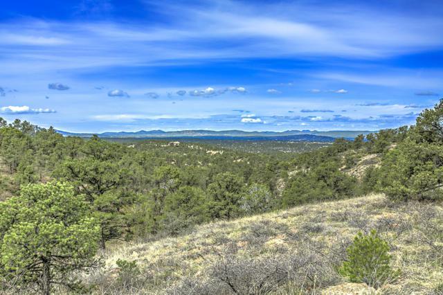 12900 N Preserve, Prescott, AZ 86305 (#1020186) :: Shelly Watne