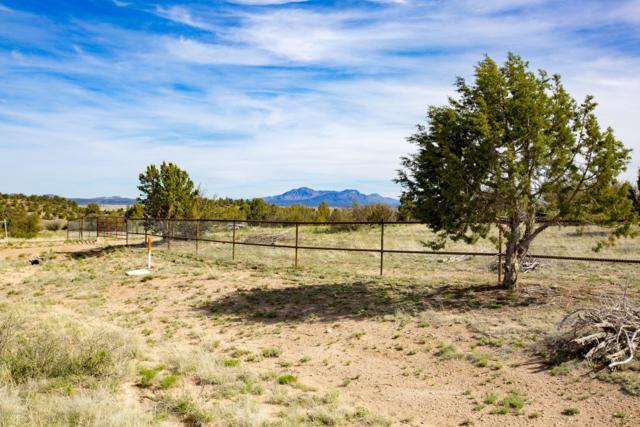 12401 W Peridot Place, Prescott, AZ 86305 (#1020231) :: HYLAND/SCHNEIDER TEAM