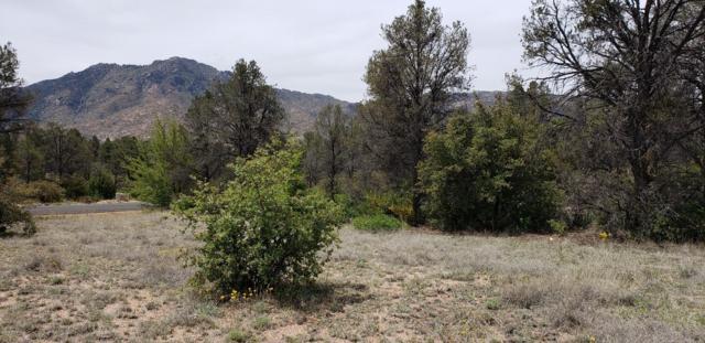 4520 W Distant View Trail, Prescott, AZ 86305 (#1020914) :: Shelly Watne