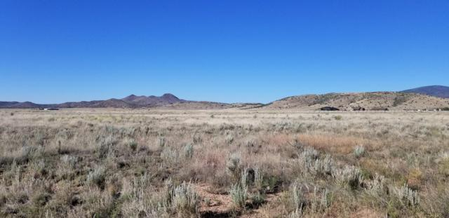9900 E Dawn To Milky Way, Prescott Valley, AZ 86315 (MLS #1021880) :: Conway Real Estate