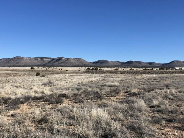 3379 W Malapai Road, Paulden, AZ 86334 (#1021996) :: West USA Realty of Prescott