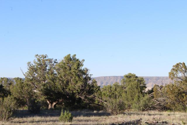 34728 W Avenida Risco, Seligman, AZ 86337 (#1022094) :: West USA Realty of Prescott