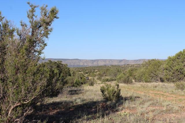 34764 W Avenida Risco, Seligman, AZ 86337 (#1022095) :: West USA Realty of Prescott