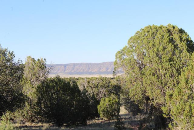 34836 W Avenida Risco, Seligman, AZ 86337 (#1022097) :: West USA Realty of Prescott