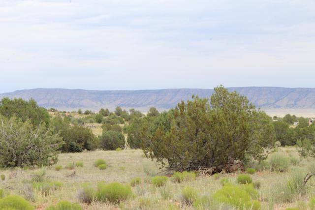 58675 N La Plancha Parkway, Seligman, AZ 86337 (#1022128) :: West USA Realty of Prescott