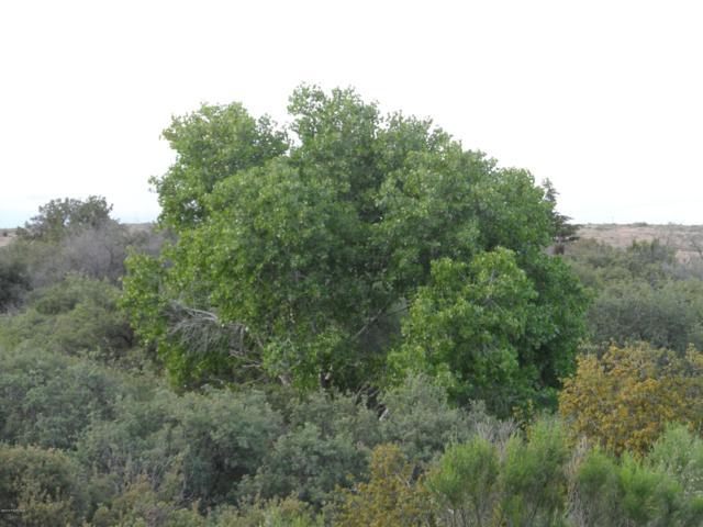 0000 E Ocotillo  (4.13 Acres) Drive, Cordes Lakes, AZ 86333 (MLS #1022512) :: Conway Real Estate