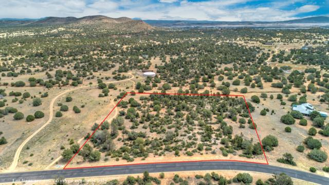 4971 W Three Forks Road, Prescott, AZ 86305 (#1022721) :: HYLAND/SCHNEIDER TEAM