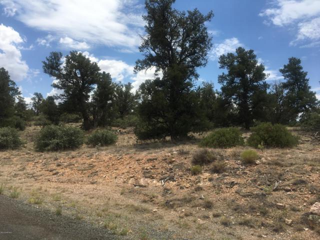 16700 Petroglyph Road, Prescott, AZ 86305 (#1023104) :: West USA Realty of Prescott