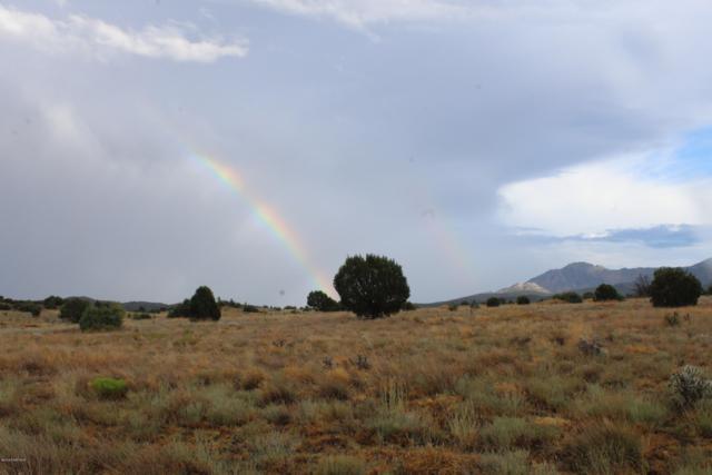 13355 N Puntenney Road, Prescott, AZ 86305 (#1023484) :: West USA Realty of Prescott