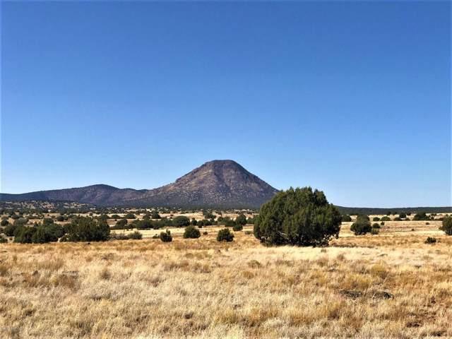77 Off Of Rawhide Ranch, Ash Fork, AZ 86320 (#1025513) :: HYLAND/SCHNEIDER TEAM