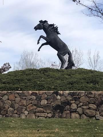 9919 N American Ranch Road, Prescott, AZ 86305 (#1026064) :: HYLAND/SCHNEIDER TEAM