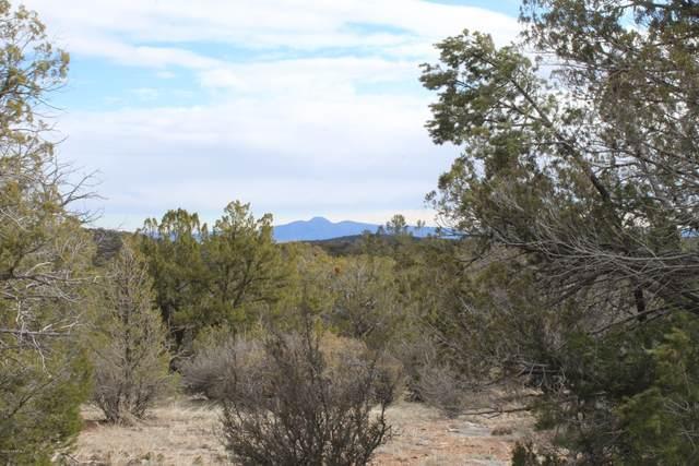 Lot 84 Shadow Rock Trail, Seligman, AZ 86337 (#1027273) :: West USA Realty of Prescott