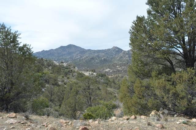 118 Ruger Ranch Phase 3, Kirkland, AZ 86332 (MLS #1027716) :: Conway Real Estate