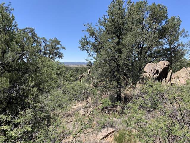 16300 N Petroglyph Road, Prescott, AZ 86305 (MLS #1027746) :: Conway Real Estate