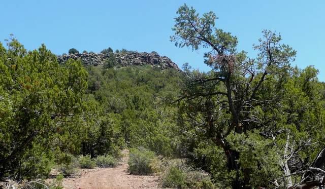 9 Lot C Our Street, Seligman, AZ 86337 (#1028872) :: West USA Realty of Prescott