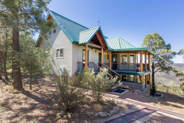 5688 Cougar Drive, Happy Jack, AZ 86024 (#1031415) :: Shelly Watne
