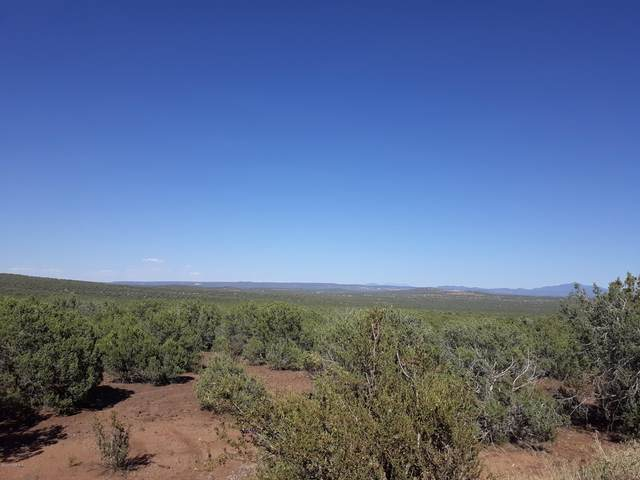 Lot 130 Juniperwood Ranch, Ash Fork, AZ 86320 (#1031783) :: West USA Realty of Prescott