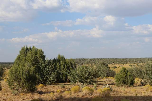 Lot 72 Roaming Way, Seligman, AZ 86337 (#1032858) :: Prescott Premier Homes | Coldwell Banker Global Luxury
