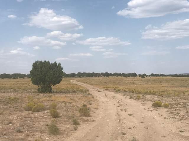 5200 Lakota Ranch Road, Ash Fork, AZ 86320 (#1032902) :: West USA Realty of Prescott