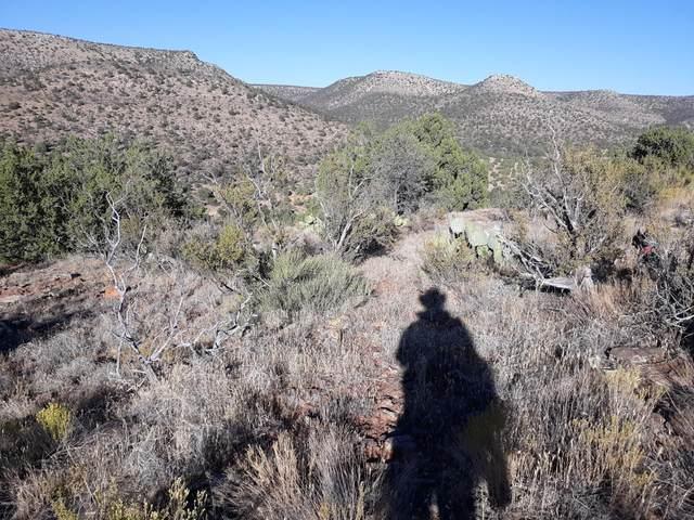 Lot 371 Juniperwood Ranch, Ash Fork, AZ 86320 (#1034224) :: Shelly Watne