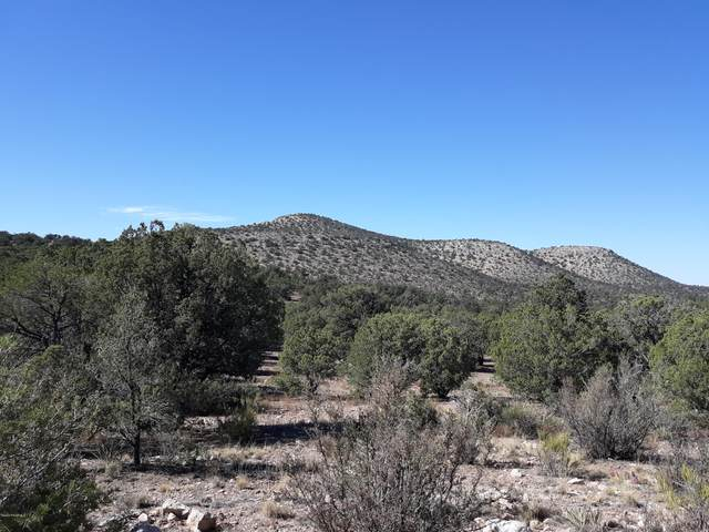 Lot 48 Juniperwood Ranch, Ash Fork, AZ 86320 (#1034310) :: Shelly Watne