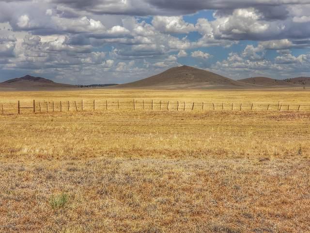 0 E Perkinsville Road, Chino Valley, AZ 86323 (#1034500) :: Gurley Street Realty