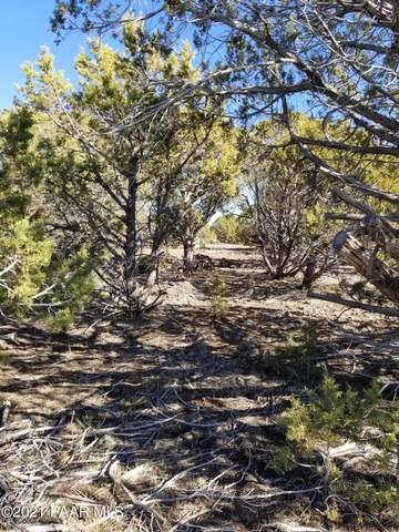 13380 W Quail Trail, Ash Fork, AZ 86406 (#1035647) :: Shelly Watne