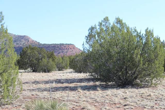 27360 W El Oro Drive, Seligman, AZ 86337 (#1037454) :: Shelly Watne