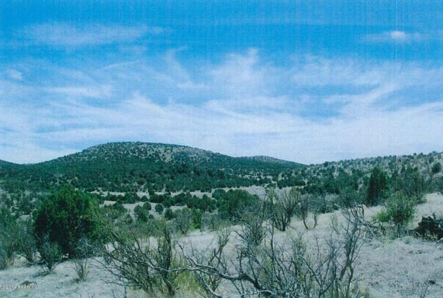 0 Cedar Heights, Chino Valley, AZ 86323 (#974624) :: Shelly Watne