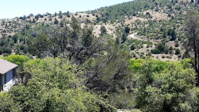 860 N Peak View Way, Prescott, AZ 86303 (#985218) :: HYLAND/SCHNEIDER TEAM