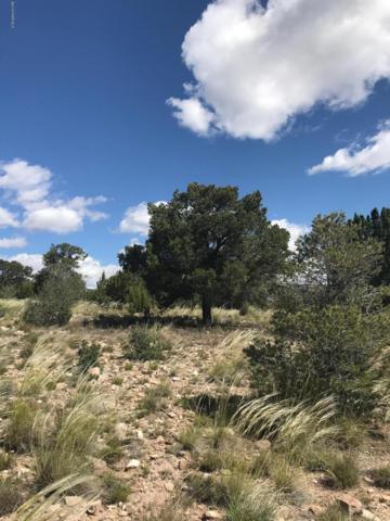 4245 Toby Lane Lane, Chino Valley, AZ 86323 (#1021238) :: HYLAND/SCHNEIDER TEAM