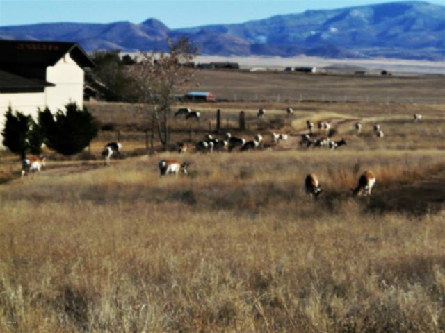 1412 S Sonata Trail, Chino Valley, AZ 86323 (#1022050) :: Shelly Watne