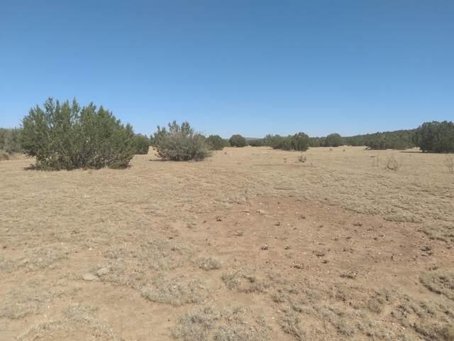 Tbd Chase Rock Rd, Seligman, AZ 86337 (#1033506) :: Shelly Watne