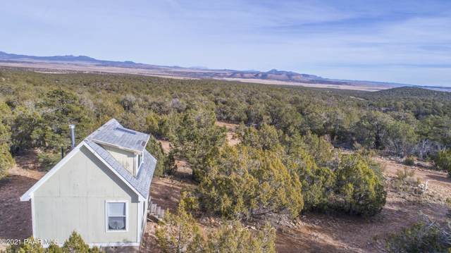 1408 Bad Dog, Seligman, AZ 86337 (MLS #1034860) :: Conway Real Estate
