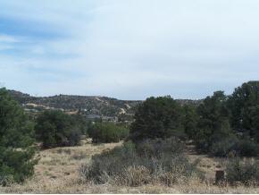 12985 N Electra Road, Prescott, AZ 86305 (#1004064) :: HYLAND/SCHNEIDER TEAM