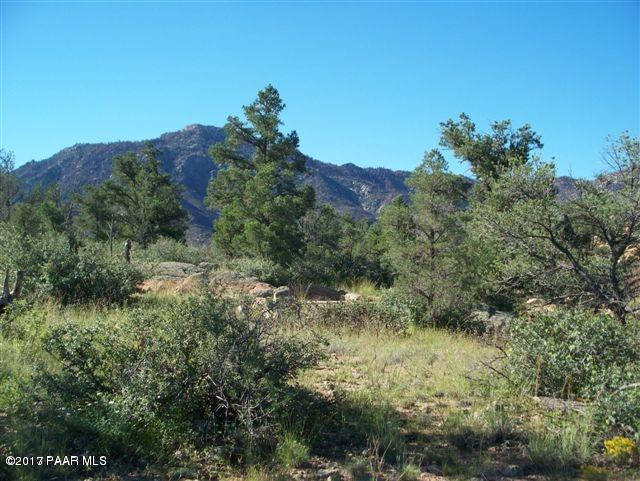 4695 W Phantom Hill Road, Prescott, AZ 86305 (#1006797) :: The Kingsbury Group