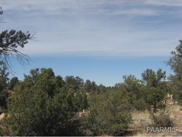 15230 N Little Diamond Way, Prescott, AZ 86305 (#1008104) :: The Kingsbury Group