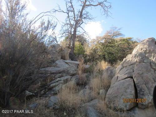 1960 W Side Winder Road, Prescott, AZ 86305 (#1008586) :: HYLAND/SCHNEIDER TEAM