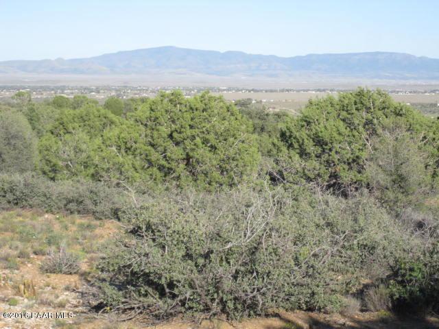 0 W Road 2 South, Prescott, AZ 86305 (#1008708) :: The Kingsbury Group