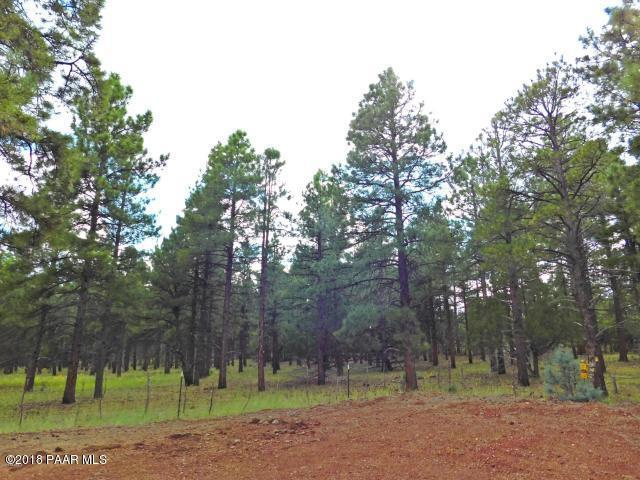 3729 W Cohonina Trail, Williams, AZ 86046 (#1008966) :: HYLAND/SCHNEIDER TEAM