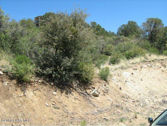 595 Sycamore Canyon, Prescott, AZ 86303 (#1009271) :: HYLAND/SCHNEIDER TEAM