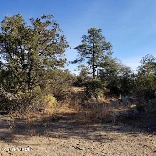 0 Buttermilk Road, Prescott, AZ 86305 (#1010193) :: The Kingsbury Group