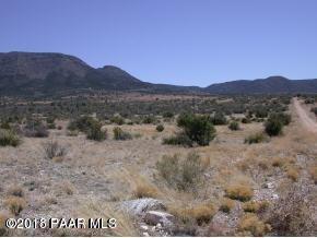 13820 E Ringtail Drive, Prescott Valley, AZ 86315 (#1010459) :: The Kingsbury Group